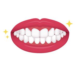 歯列矯正・歯の矯正 イラスト / 整った歯並びのイラスト素材 [FYI04950069]