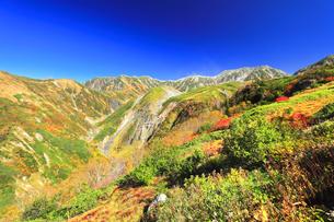 秋の立山 天狗平よりソーメン滝に紅葉と快晴の空の写真素材 [FYI04950096]