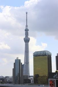 浅草雷門前から見える東京スカイツリーの写真素材 [FYI04950110]