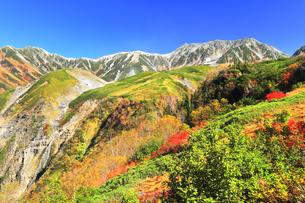 秋の立山 天狗平よりソーメン滝に紅葉と快晴の空の写真素材 [FYI04950231]
