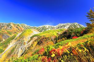 秋の立山 天狗平よりソーメン滝に紅葉と快晴の空の写真素材 [FYI04950233]