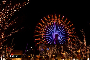 神戸港/ハーバーランドモザイク観覧車の夜景の写真素材 [FYI04950290]