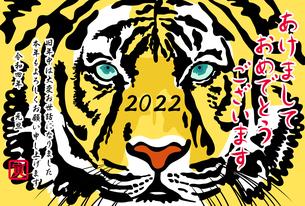 正面を向いた虎の顔のアップ【年賀状テンプレート】のイラスト素材 [FYI04950847]