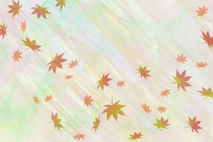 水彩散り紅葉のイラスト素材 [FYI04951045]