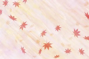 水彩散り紅葉のイラスト素材 [FYI04951046]
