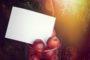 クリスマスカードの写真素材 [FYI04951250]