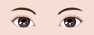 若い女性の目元ズームイラスト / 東洋人・日本人のイラスト素材 [FYI04951595]