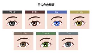 目の虹彩の色・カラーバリエーション (人種・カラーコンタクト)のイラスト素材 [FYI04951599]