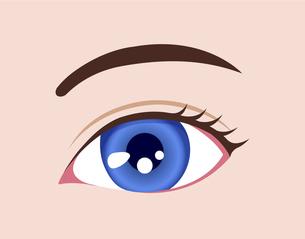 目の虹彩の色・カラー (人種・カラーコンタクト) / ブルーのイラスト素材 [FYI04951602]