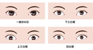 目・眼の種類 イラスト (三白眼・四白眼)のイラスト素材 [FYI04951608]