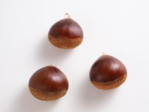 クリの生の果実3個の写真素材 [FYI04951833]