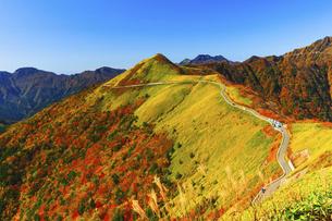 秋の瓶ヶ森林道の写真素材 [FYI04951941]