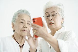 試行錯誤しながらスマートフォンを操作するシニア女性たちの写真素材 [FYI04952348]