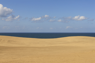 鳥取砂丘の写真素材 [FYI04952577]