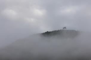 雲海の竹田城の写真素材 [FYI04952610]