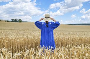 チェコ、モラヴィアの小麦畑に立つ女の子の写真素材 [FYI04953331]