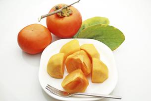 柿の写真素材 [FYI04954262]
