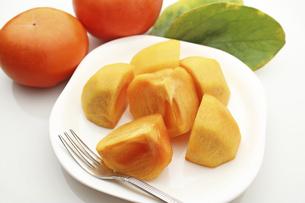 柿の写真素材 [FYI04954265]