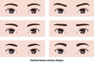若い女性の眉毛の形イラスト (メイク・化粧) のイラスト素材 [FYI04954314]