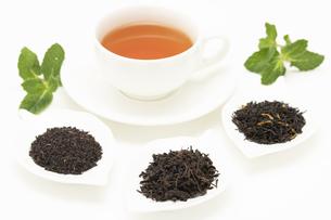 紅茶と茶葉の写真素材 [FYI04955958]