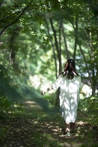 森の中の女性の写真素材 [FYI04956071]