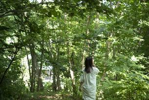森の中の女性の写真素材 [FYI04956077]