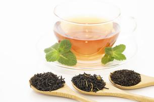 ティーカップの紅茶といろいろな茶葉の写真素材 [FYI04956908]