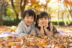 落ち葉の上に寝転ぶ子供の写真素材 [FYI04959304]