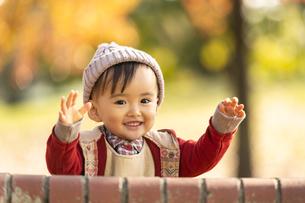 公園で遊ぶ赤ちゃんの写真素材 [FYI04959340]