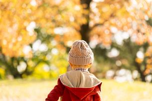 公園で遊ぶ赤ちゃんの写真素材 [FYI04959354]