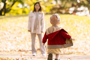 公園で遊ぶ親子の写真素材 [FYI04959355]