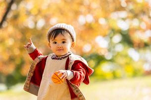 公園で遊ぶ赤ちゃんの写真素材 [FYI04959359]