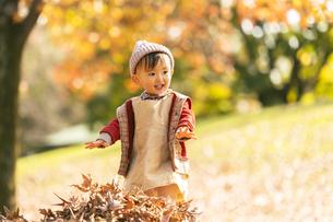 公園で遊ぶ赤ちゃんの写真素材 [FYI04959361]