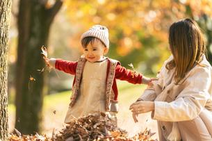 公園で遊ぶ親子の写真素材 [FYI04959362]