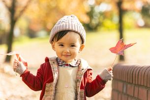 公園で遊ぶ赤ちゃんの写真素材 [FYI04959366]