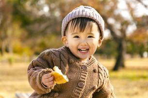 パンを食べる赤ちゃんの写真素材 [FYI04959377]