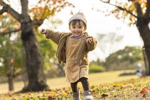 公園で遊ぶ赤ちゃんの写真素材 [FYI04959382]