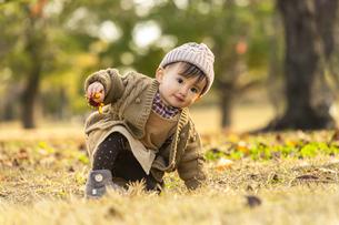 公園で遊ぶ赤ちゃんの写真素材 [FYI04959384]