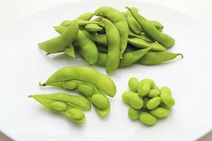 枝豆の写真素材 [FYI04959737]