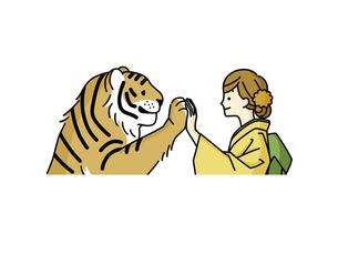 手を合わせている虎と着物姿の女性のイラスト素材 [FYI04960295]